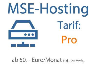 Hosting-Tarif Pro